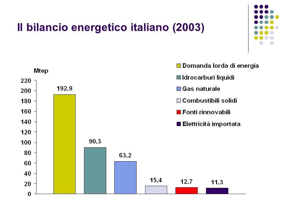 Il bilancio energetico italiano (2003)