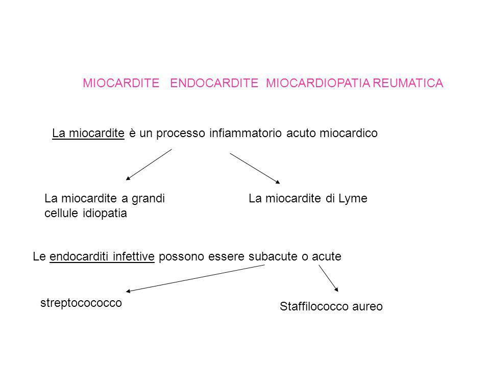 MIOCARDITE ENDOCARDITE MIOCARDIOPATIA REUMATICA