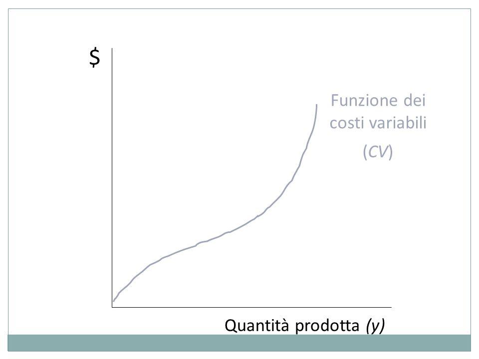 Funzione dei costi variabili