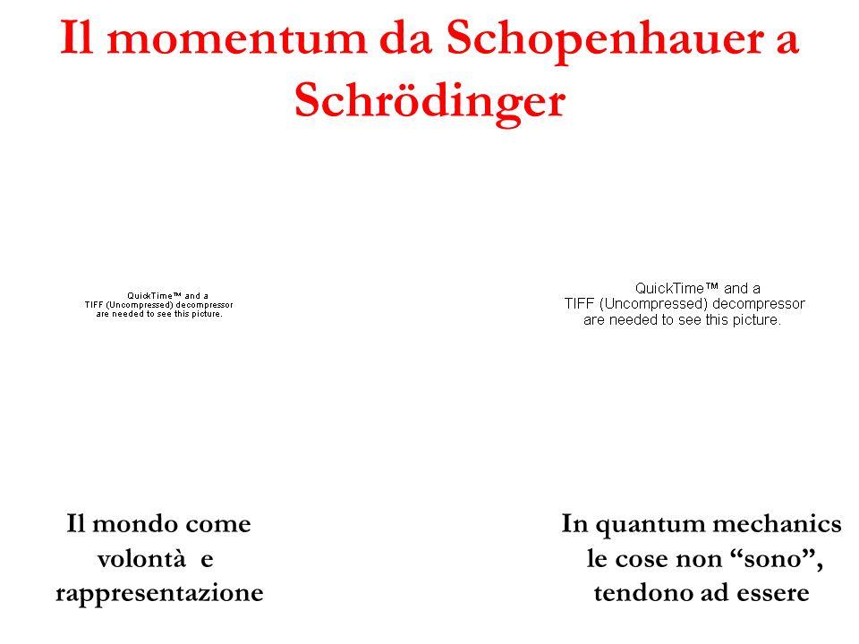 Il momentum da Schopenhauer a Schrödinger