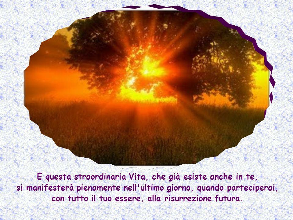 E questa straordinaria Vita, che già esiste anche in te, si manifesterà pienamente nell ultimo giorno, quando parteciperai, con tutto il tuo essere, alla risurrezione futura.