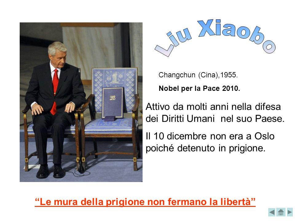 Liu Xiaobo Changchun (Cina),1955. Nobel per la Pace 2010. Attivo da molti anni nella difesa dei Diritti Umani nel suo Paese.