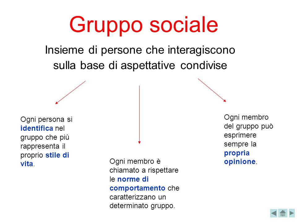 Gruppo sociale Insieme di persone che interagiscono sulla base di aspettative condivise.