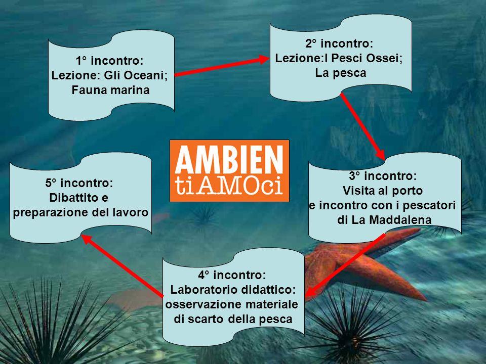 Lezione:I Pesci Ossei; La pesca 1° incontro: Lezione: Gli Oceani;