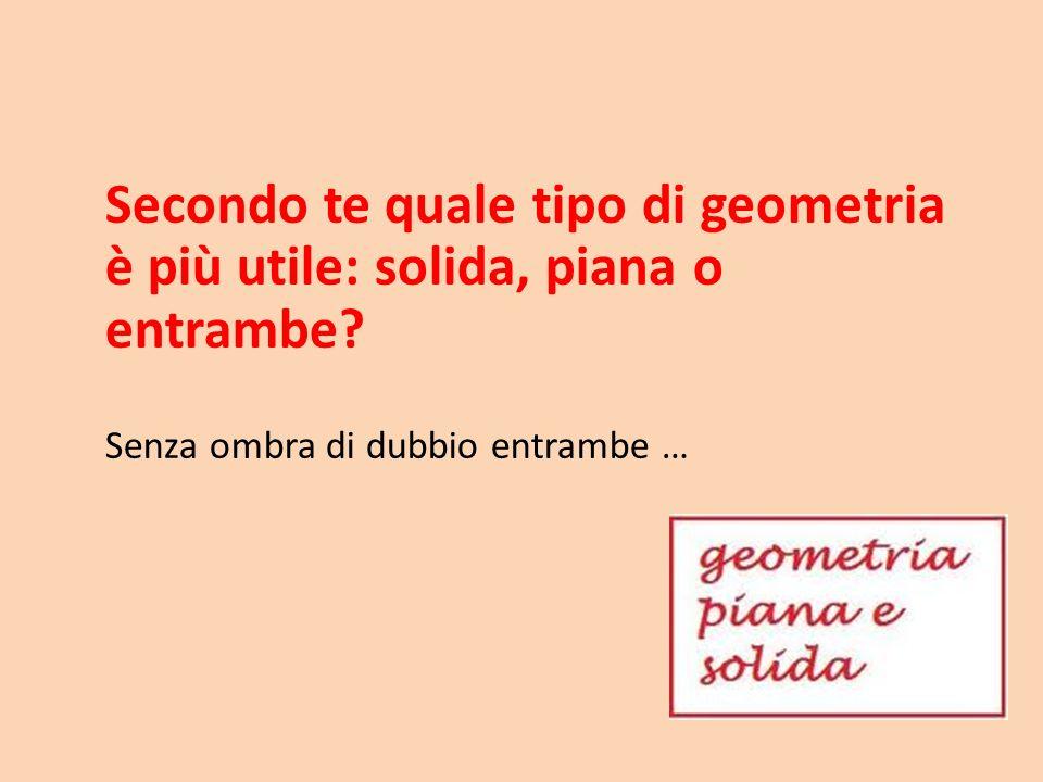 Secondo te quale tipo di geometria è più utile: solida, piana o entrambe