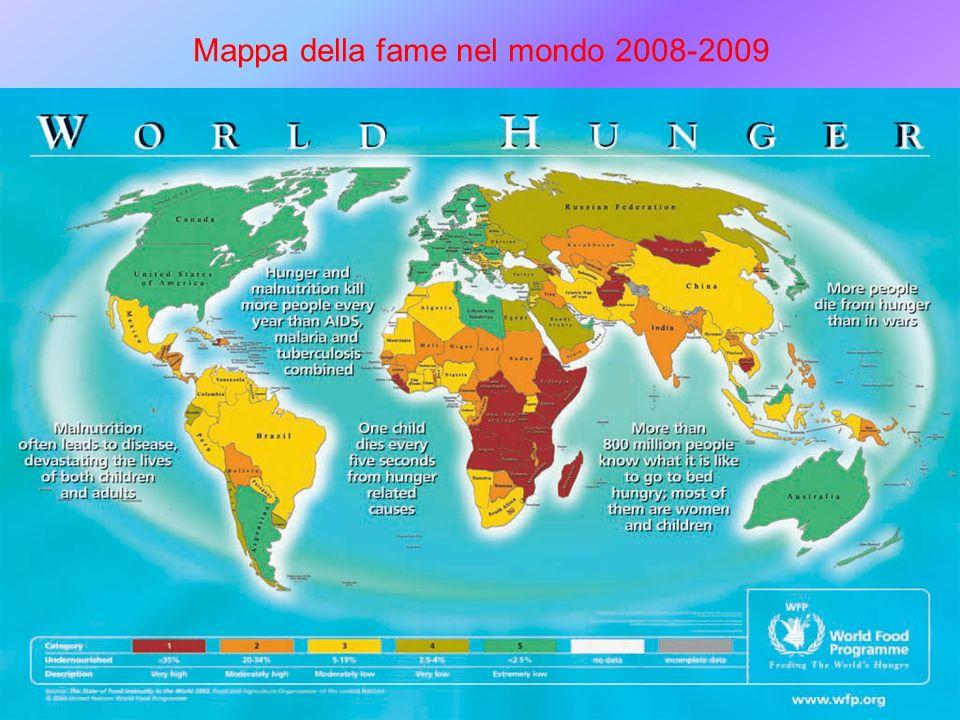 Mappa della fame nel mondo 2008-2009