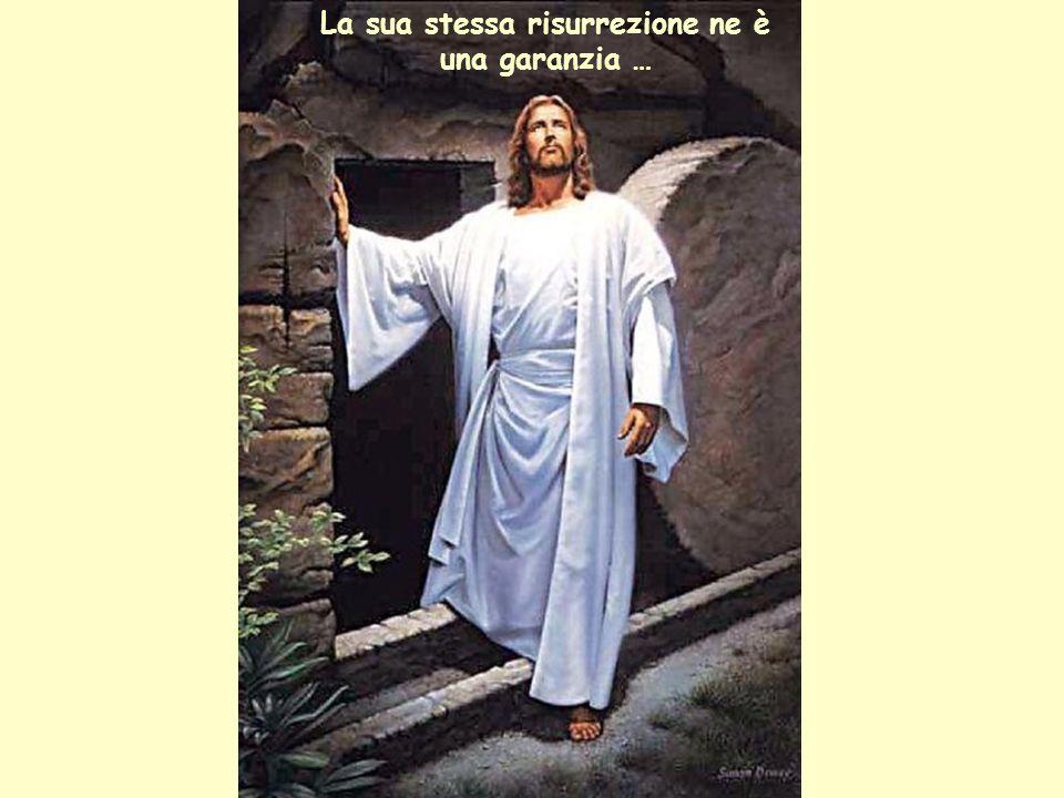 La sua stessa risurrezione ne è una garanzia …