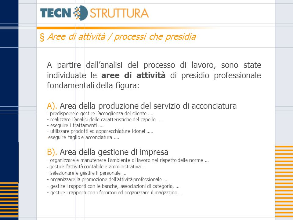 § Aree di attività / processi che presidia