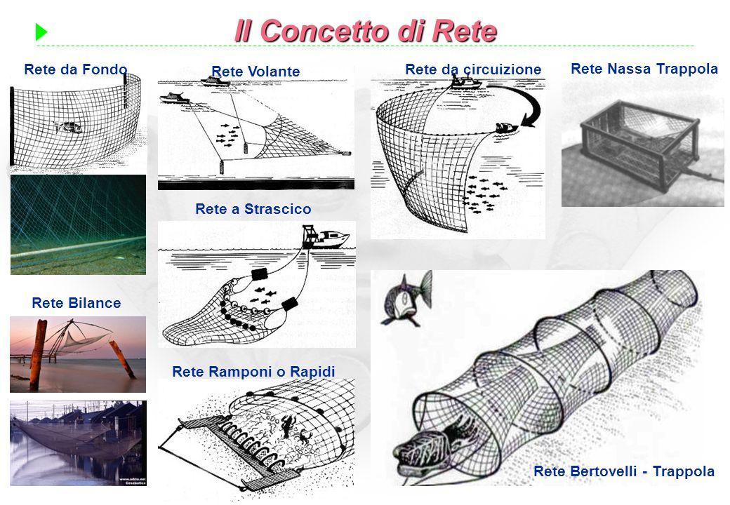 Rete Bertovelli - Trappola