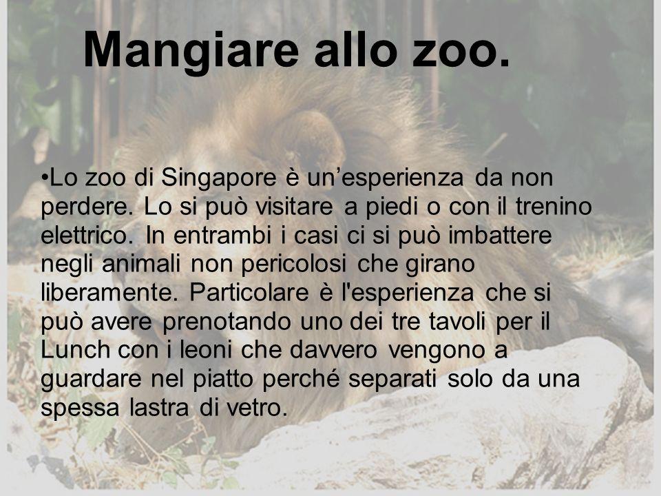 Mangiare allo zoo.