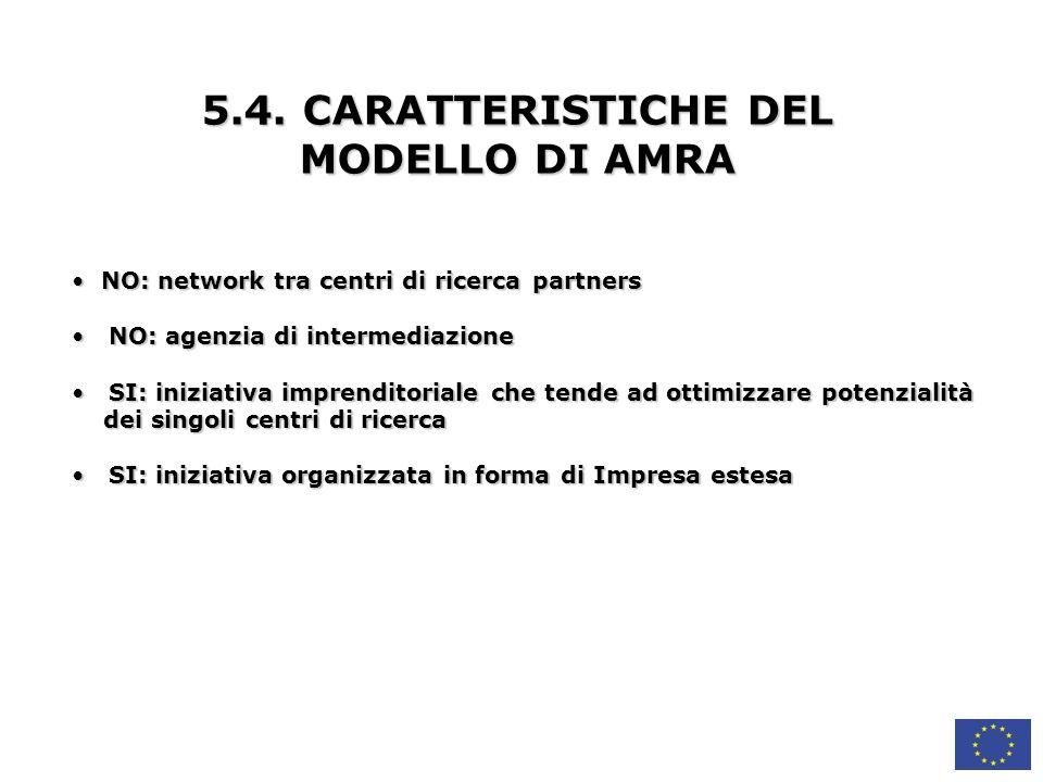 5.4. CARATTERISTICHE DEL MODELLO DI AMRA