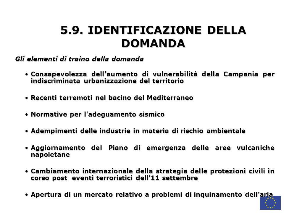 5.9. IDENTIFICAZIONE DELLA DOMANDA