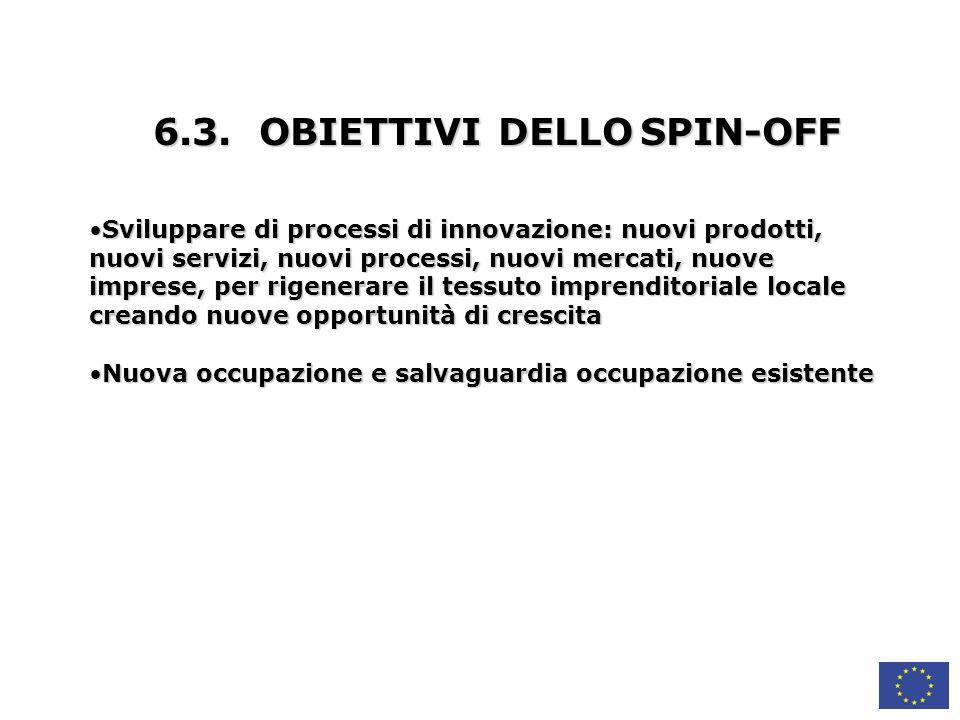 6.3. OBIETTIVI DELLO SPIN-OFF