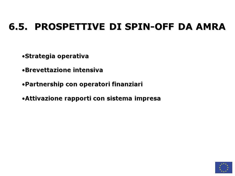 6.5. PROSPETTIVE DI SPIN-OFF DA AMRA