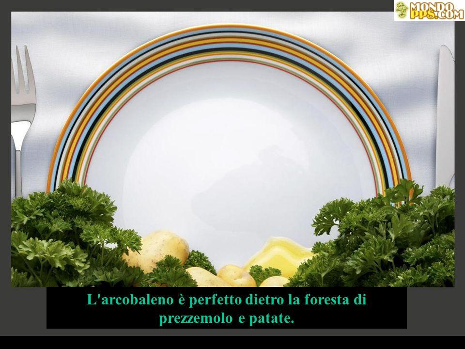 L arcobaleno è perfetto dietro la foresta di prezzemolo e patate.