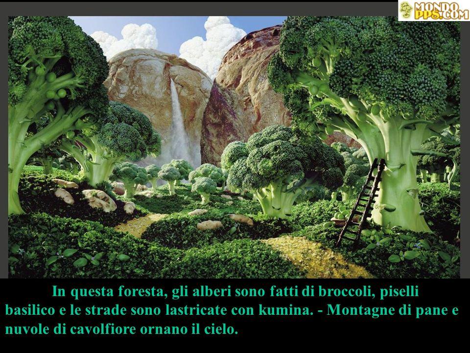 In questa foresta, gli alberi sono fatti di broccoli, piselli basilico e le strade sono lastricate con kumina.
