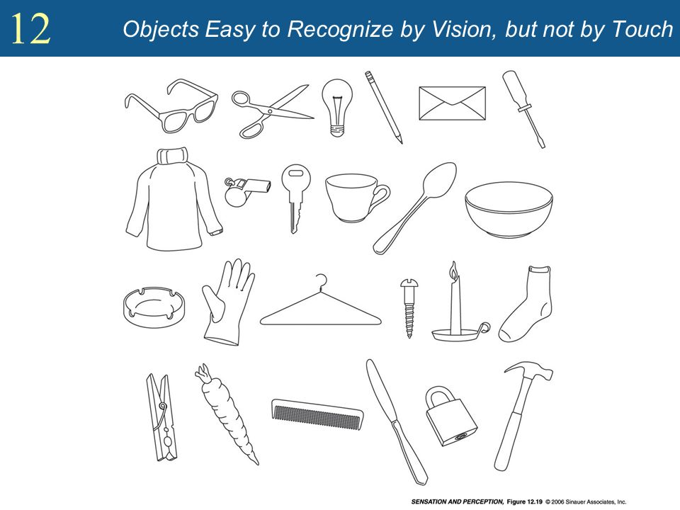 Objects Easy to Recognize by Vision, but not by Touch
