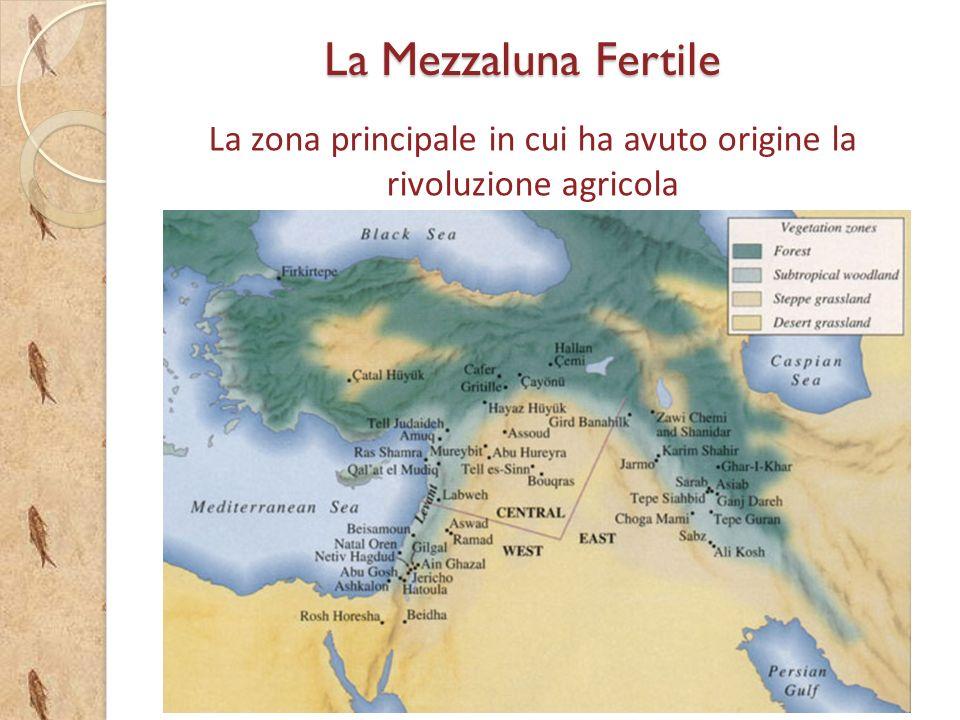 La zona principale in cui ha avuto origine la rivoluzione agricola