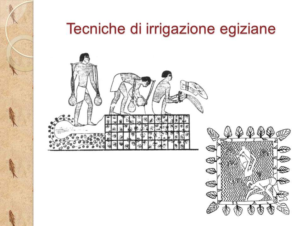 la rivoluzione agricola del neolitico ppt video online