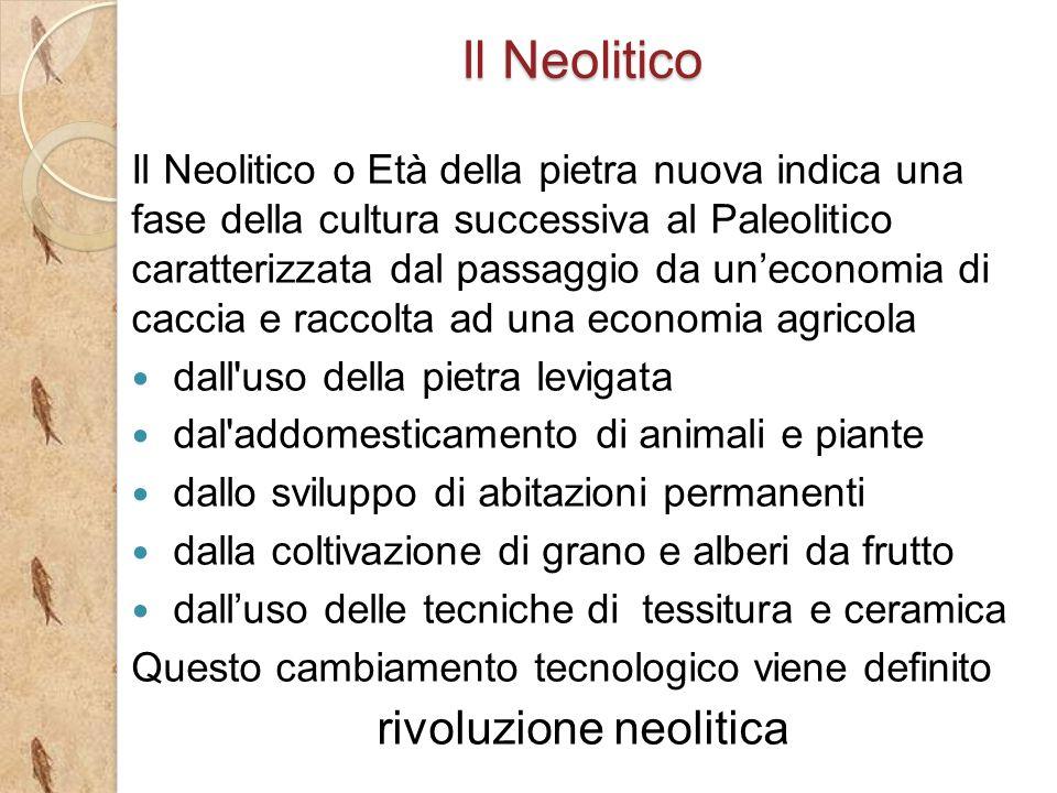 rivoluzione neolitica