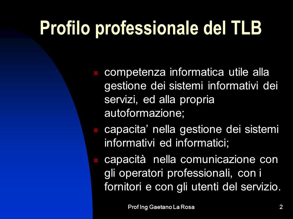 Profilo professionale del TLB