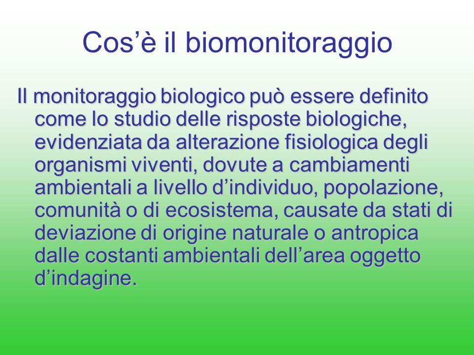 Cos'è il biomonitoraggio