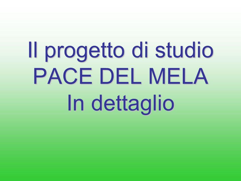 Il progetto di studio PACE DEL MELA In dettaglio