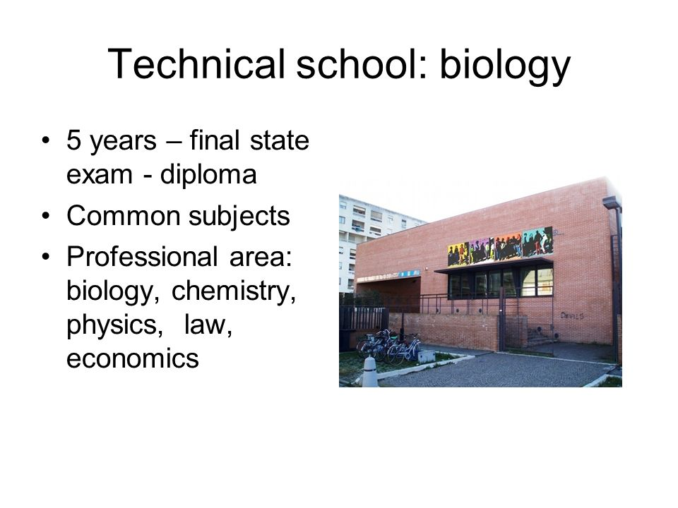 Technical school: biology