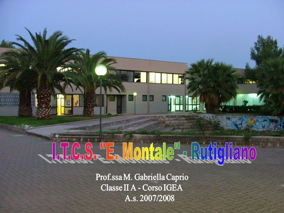 I.T.C.S. E. Montale - Rutigliano