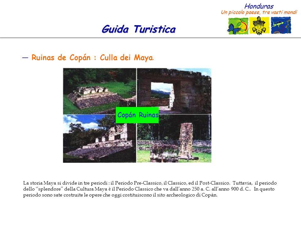 Ruinas de Copán : Culla dei Maya.