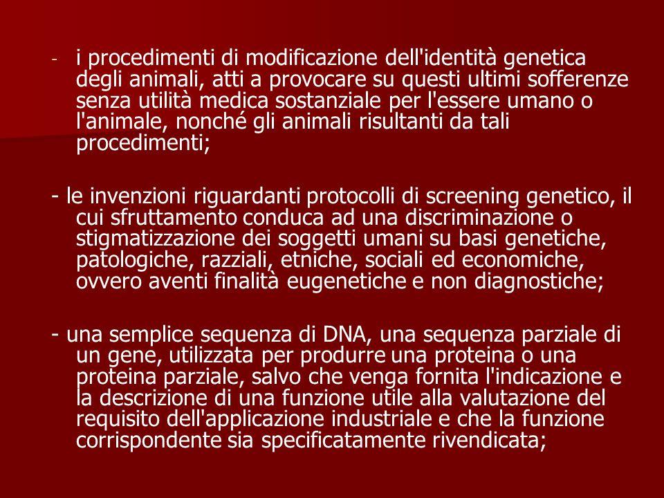 i procedimenti di modificazione dell identità genetica degli animali, atti a provocare su questi ultimi sofferenze senza utilità medica sostanziale per l essere umano o l animale, nonché gli animali risultanti da tali procedimenti;