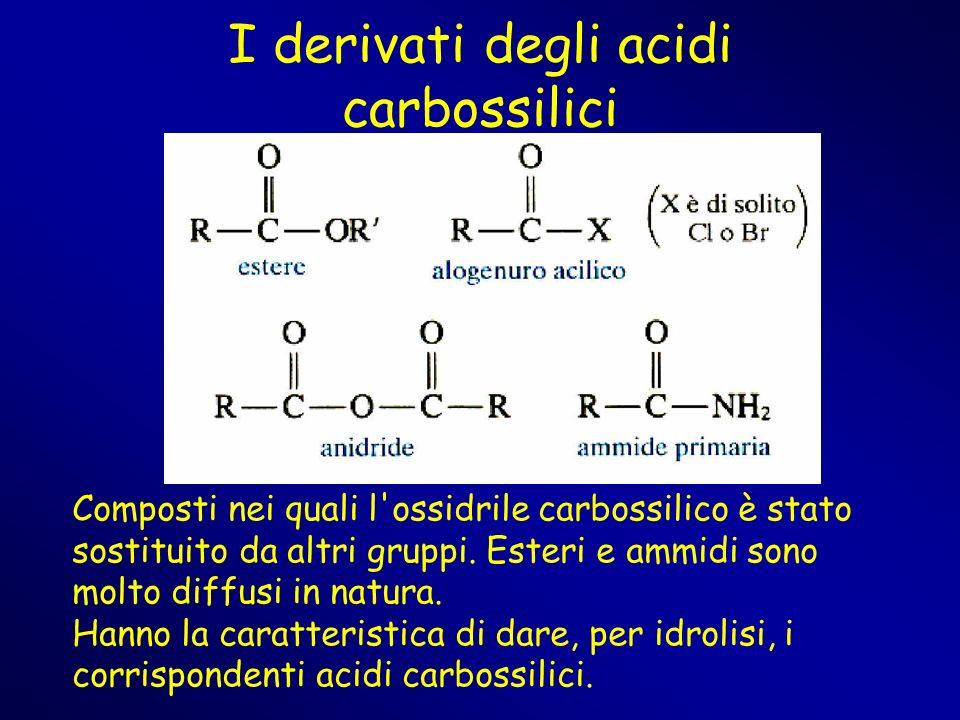 I derivati degli acidi carbossilici