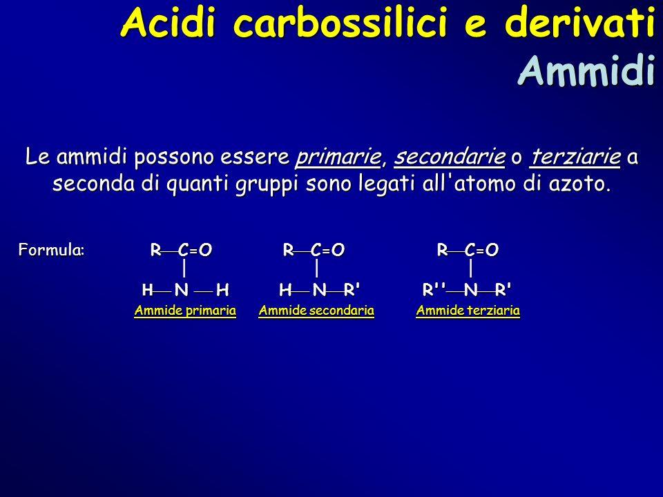 Acidi carbossilici e derivati Ammidi