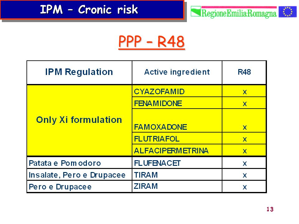 IPM – Cronic risk PPP – R48 13 13