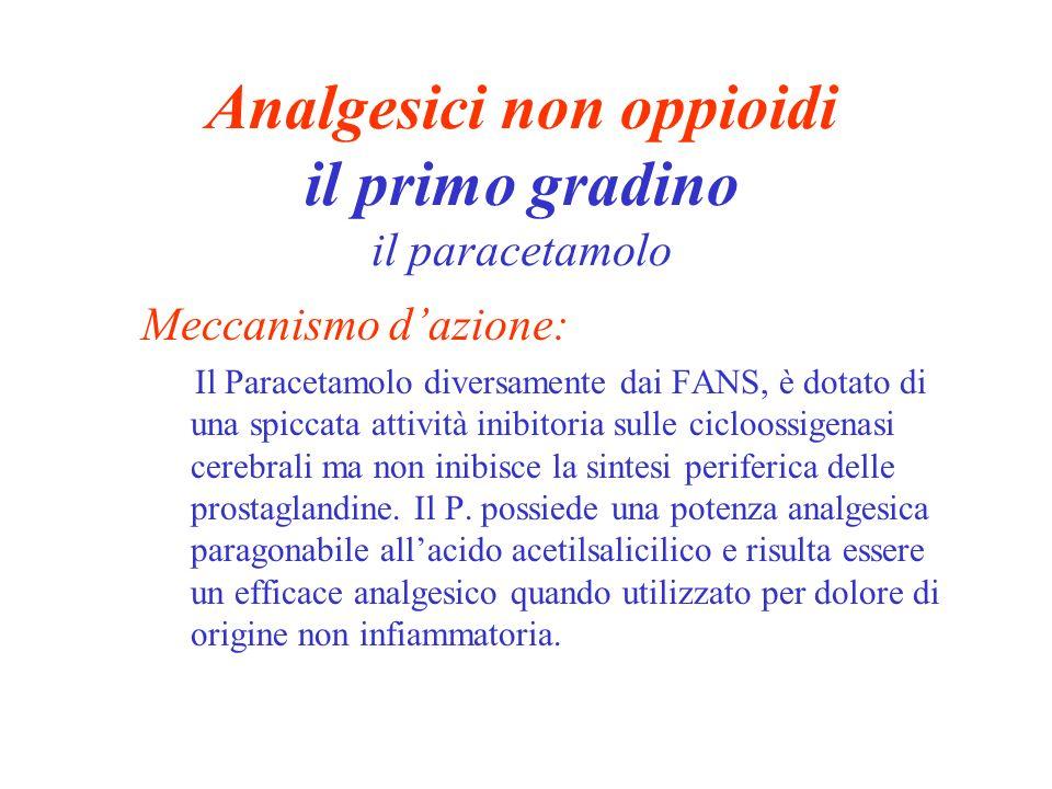 Analgesici non oppioidi il primo gradino il paracetamolo