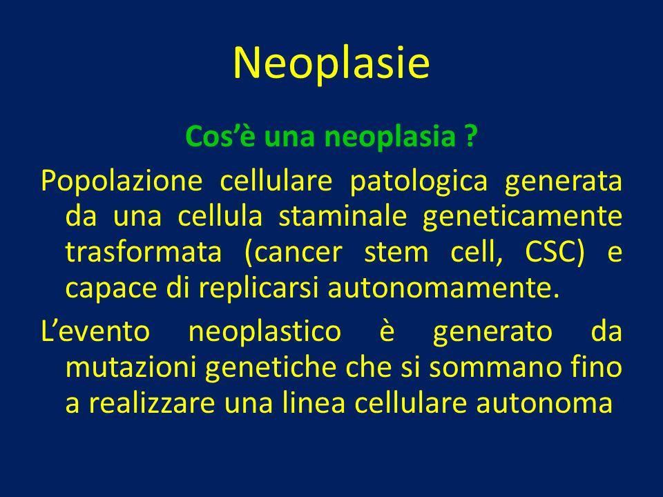 Neoplasie Cos'è una neoplasia