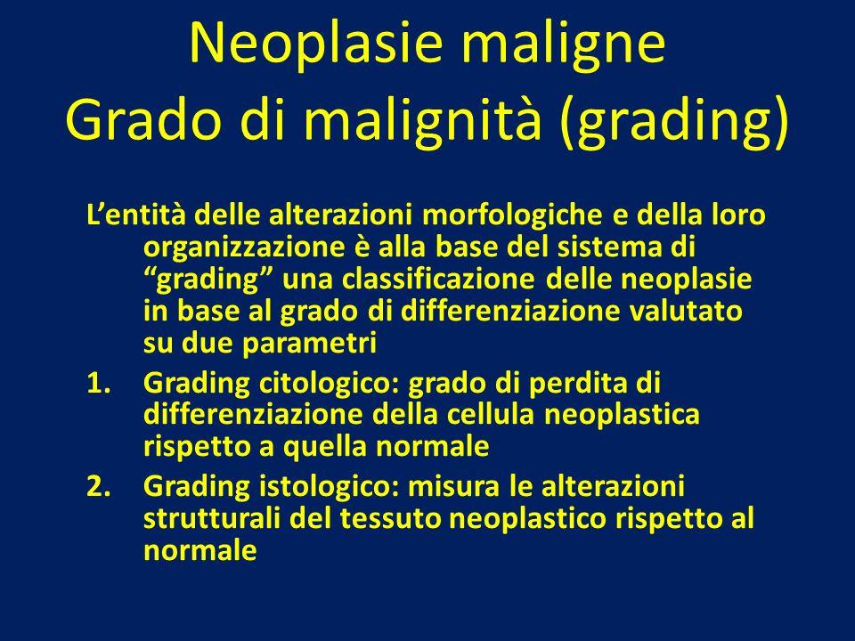 Neoplasie maligne Grado di malignità (grading)