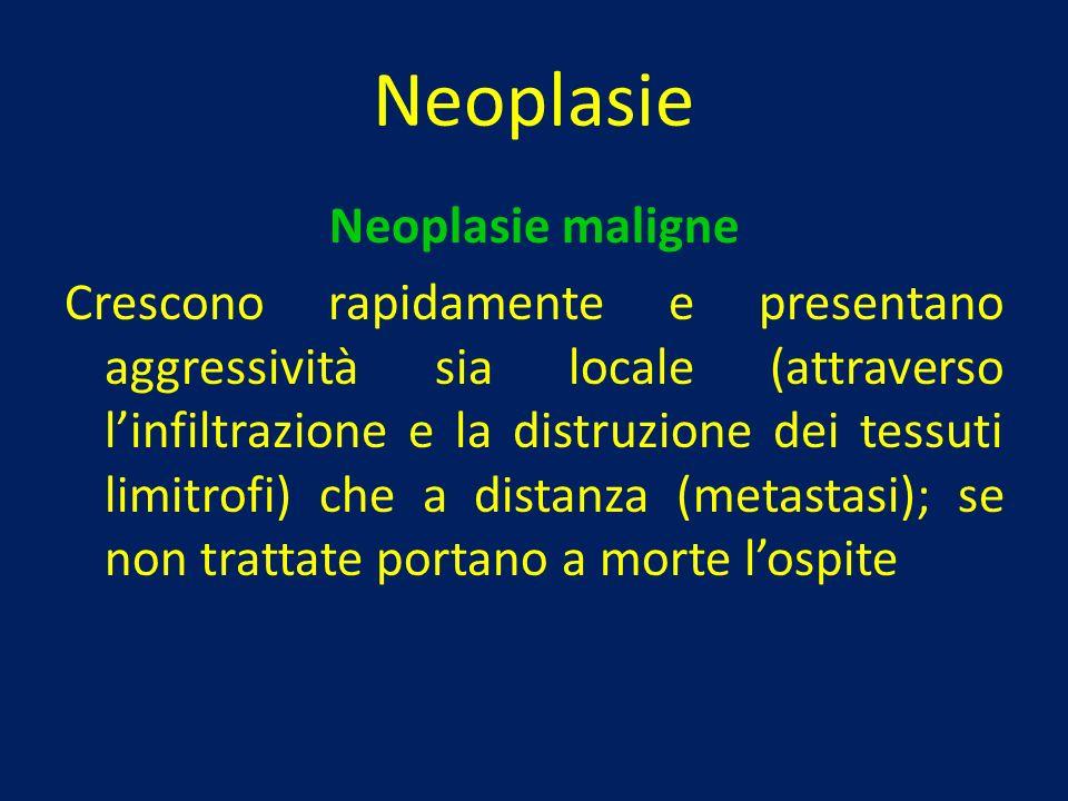 Neoplasie Neoplasie maligne
