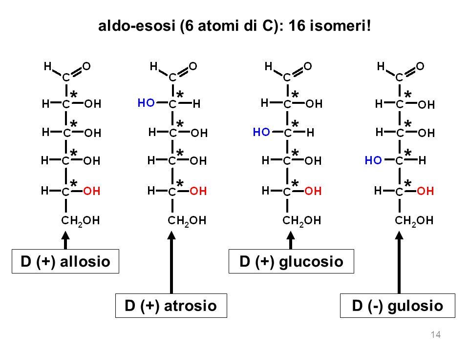 aldo-esosi (6 atomi di C): 16 isomeri!