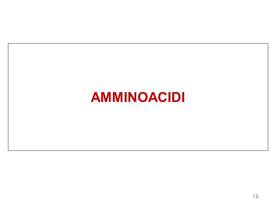AMMINOACIDI 19