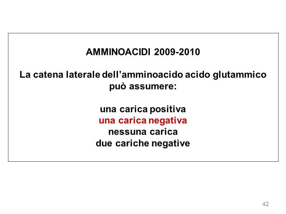 La catena laterale dell'amminoacido acido glutammico può assumere: