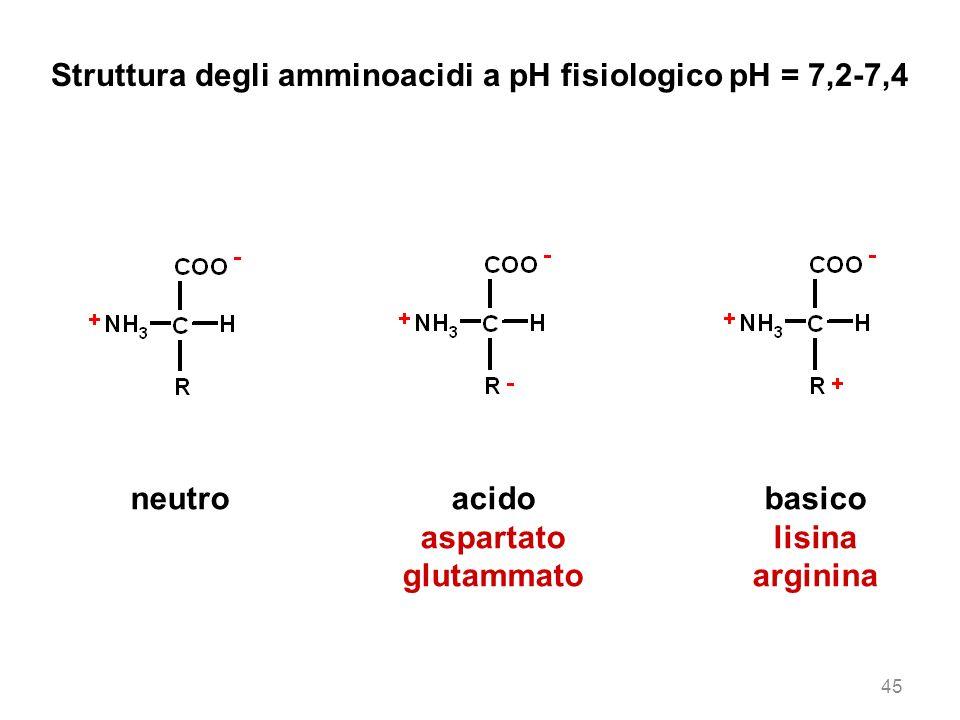 Struttura degli amminoacidi a pH fisiologico pH = 7,2-7,4