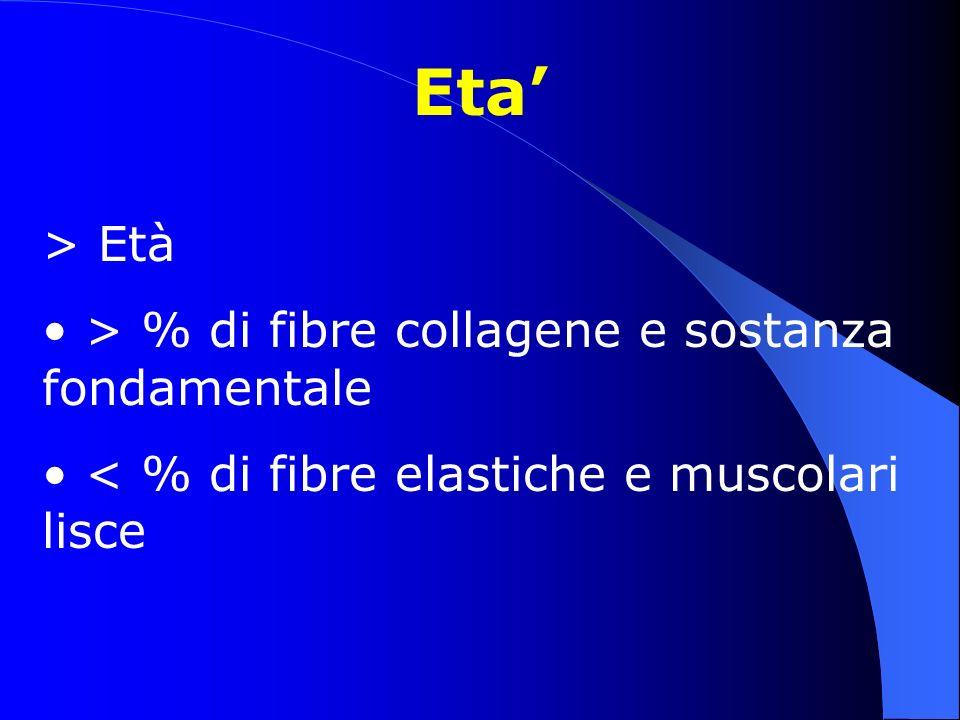 Eta' > Età > % di fibre collagene e sostanza fondamentale