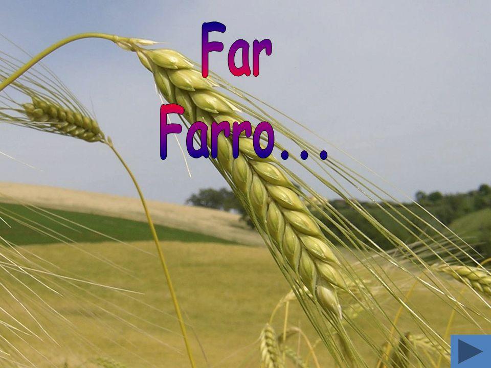 Far Farro...