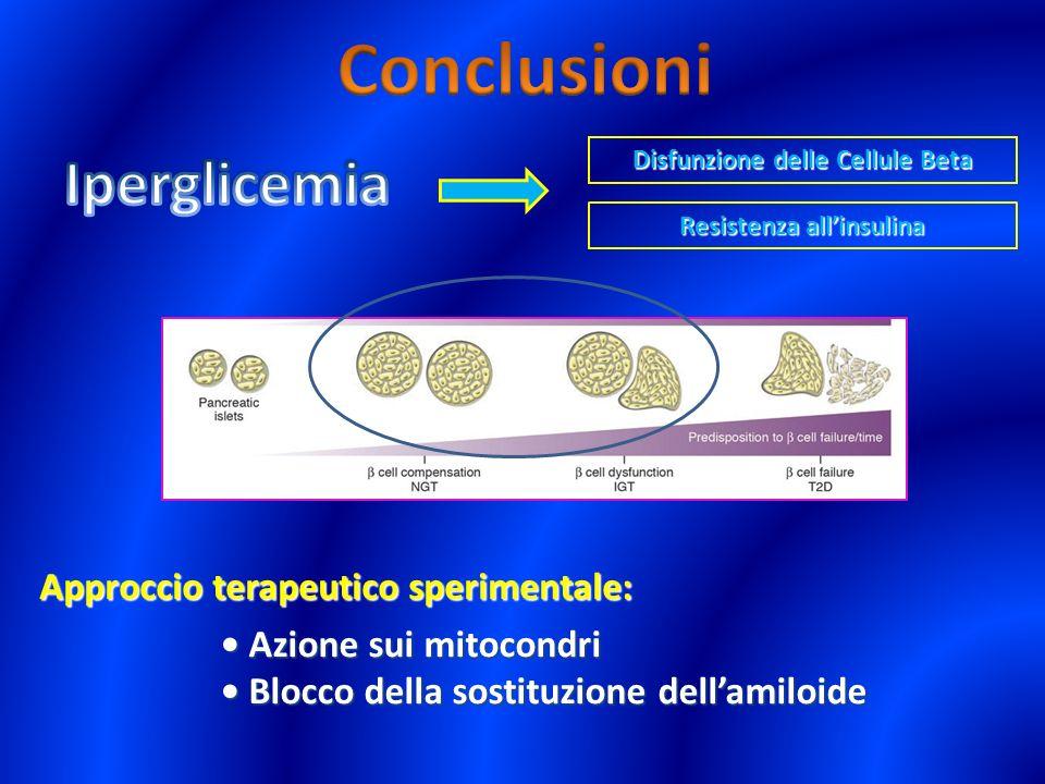 Disfunzione delle Cellule Beta Resistenza all'insulina
