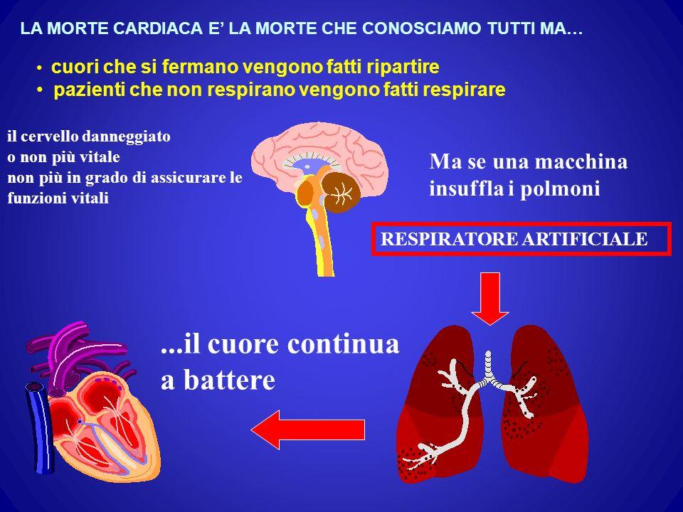 ...il cuore continua a battere Ma se una macchina insuffla i polmoni