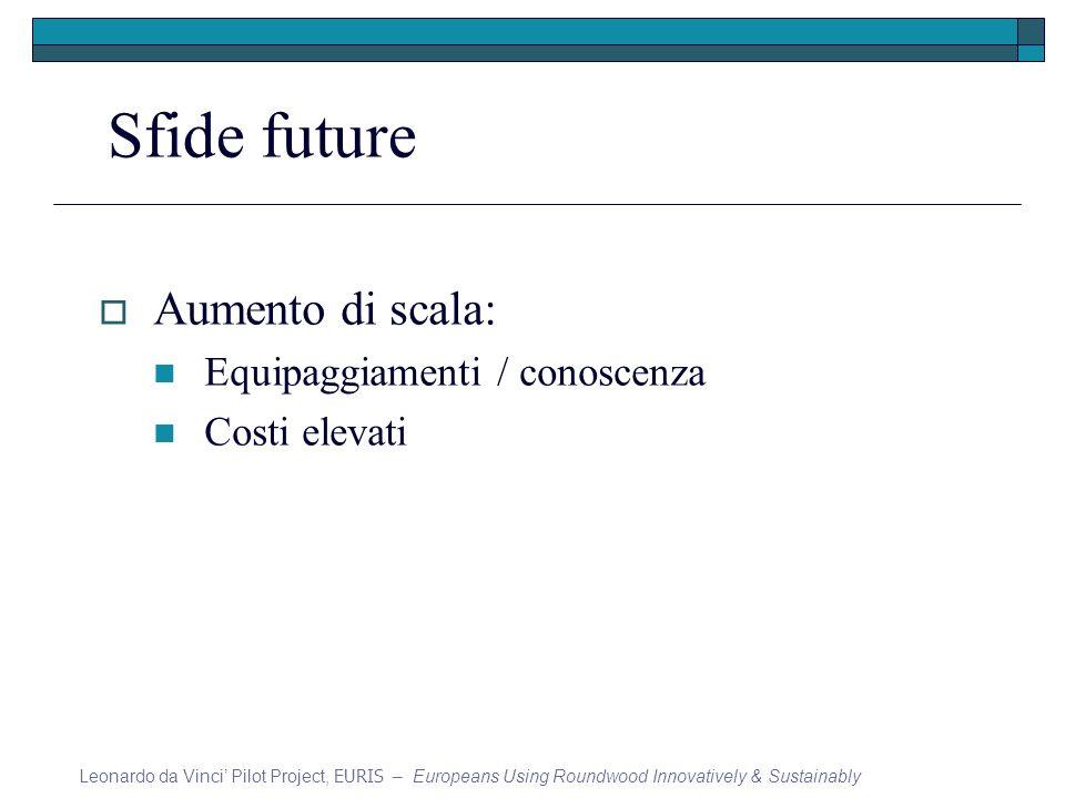 Sfide future Aumento di scala: Equipaggiamenti / conoscenza