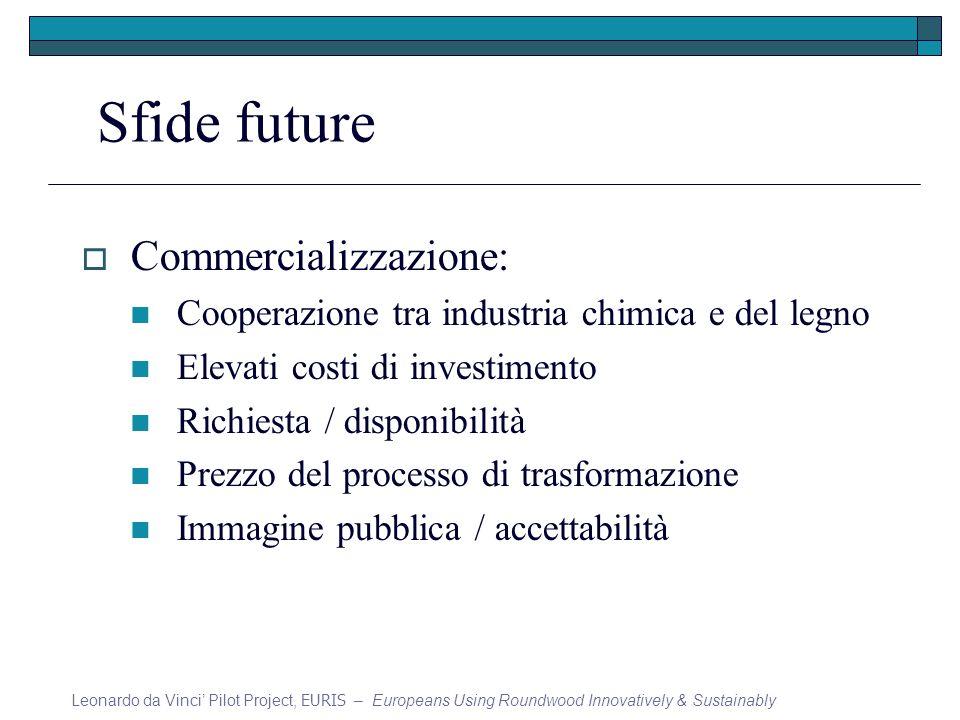 Sfide future Commercializzazione: