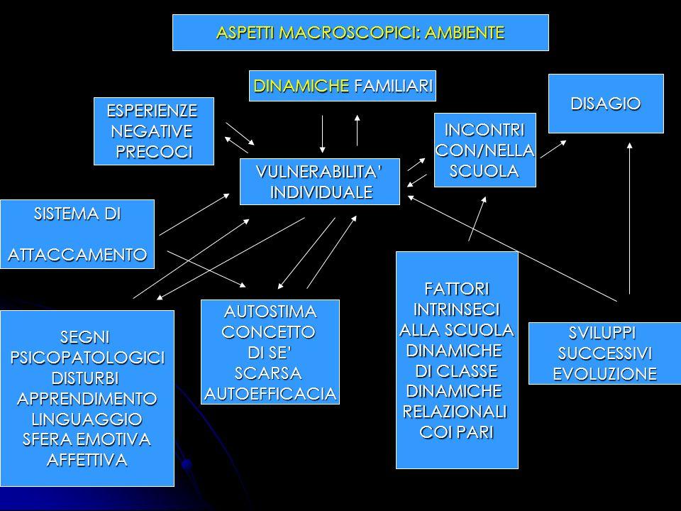 ASPETTI MACROSCOPICI: AMBIENTE