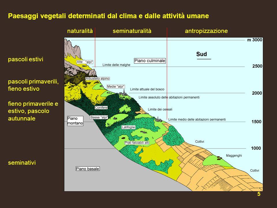 Paesaggi vegetali determinati dal clima e dalle attività umane